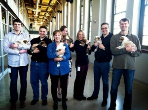 Paw Print Genetics Celebrates Its One-year Anniversary