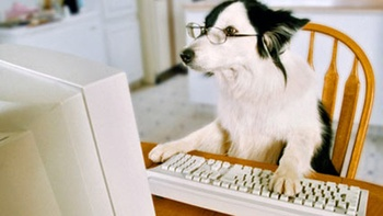 My Dog is Better at Computers Than I Am. How Do I Place an Order at Paw Print Genetics?