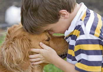 Why do genetic testing in your dog?