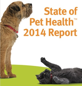 Banfield Pet Hospitals Release Health Report