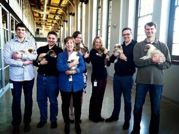 Paw Print Genetics Celebrates Its One-year Anniversary