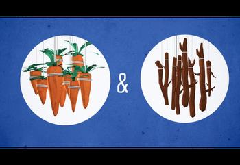 Training: Carrots, Sticks, Drive and Enjoyment