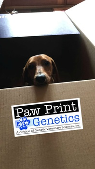 Paw Print Genetics has Moved!